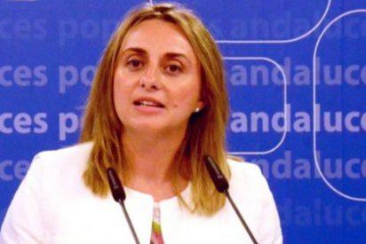 Carazo denuncia que la Junta vuelve a sumir en el caos el inicio del nuevo curso escolar