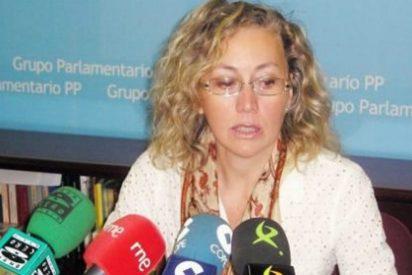 Teresa Angulo: La provincia de Badajoz cuenta con 1.626 autónomos más que al inicio de la legislatura