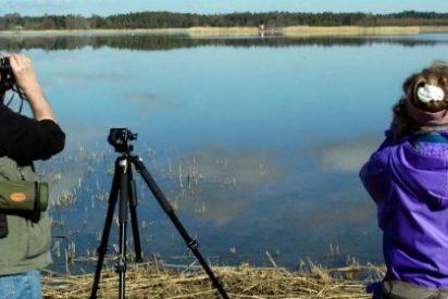 Extremadura presenta una aplicación sobre turismo ornitológico