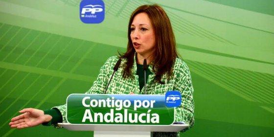 """Navarro (PP): """"El documento de PSOE y C´s es un corte y pega del discurso de Díaz"""""""