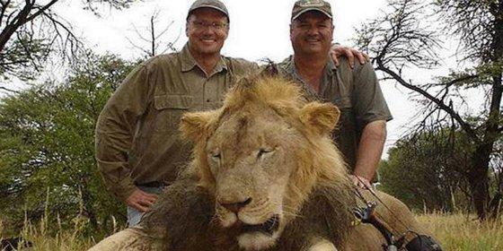 El cazador del león Cecil que pagó 50.000 € por decapitarlo ¡es un dentista de EEUU!