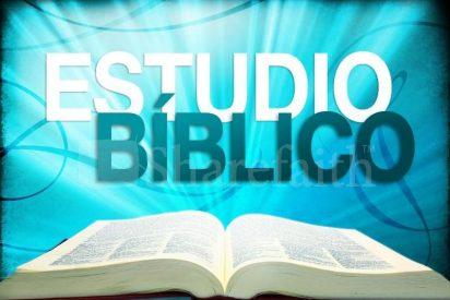 Los estudios bíblicos en la actualidad