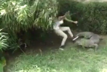 Así se lanza a una fosa de feroces cocodrilos para presumir ante el novio