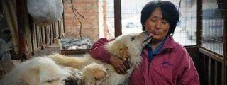 La mujer que invierte su dinero en rescatar perros de los carniceros