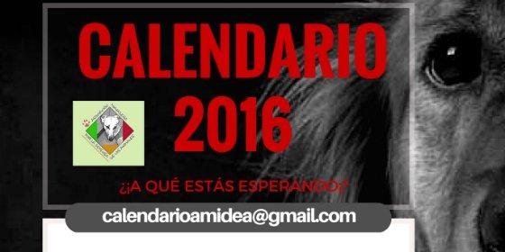 AMIDEA Miajadas pone a la venta su nuevo calendario 2016