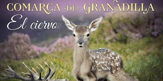 Ecologistas en Acción Granadilla apuesta por cooperativas juveniles