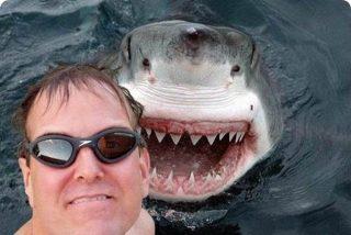 Dime qué 'selfies' te haces y te diré cómo eres
