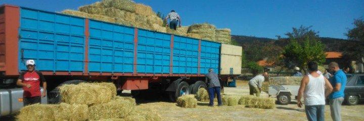 Diputación de Cáceres realiza una segunda entrega de heno a los ganaderos de la Sierra de Gata