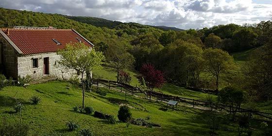 ¿Cómo y hacia dónde crece el turismo rural en España?