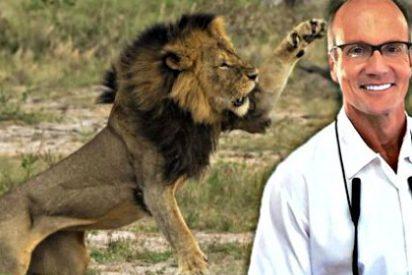 El dentista que se 'cargo' al león Cecil vuelve al trabajo