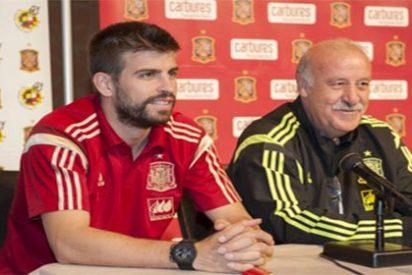 Le piden a Del Bosque que no convoque nunca más a un jugador con la Selección Española