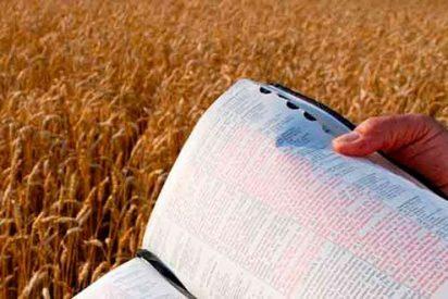 """""""Vete directo a la Biblia"""""""