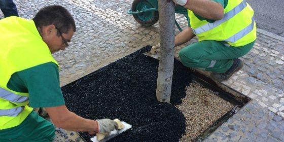 Ayuntamiento de Cáceres prueba nuevos cubre-alcorques de caucho