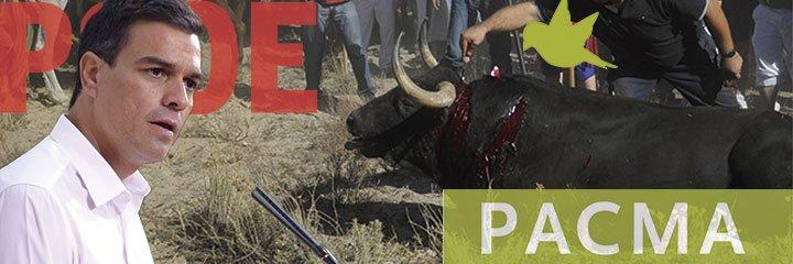 PACMA entrega 120.000 firmas a Pedro Sánchez para abolir el Toro de la Vega