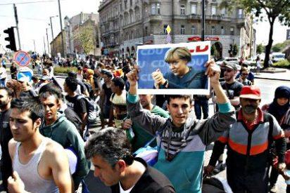 Austria se harta de tanto refugiado anuncia un fin gradual al paso libre en su frontera con Hungría