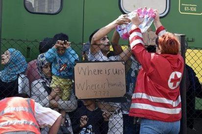 """""""Dios ama al inmigrante dándole sustento y vestido"""" (Deut 10,18)"""