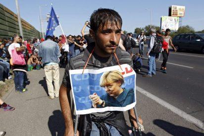 La Iglesia española continúa volcándose con los refugiados