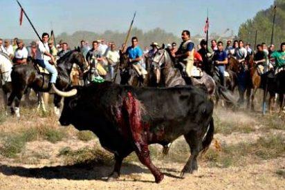 """""""¡Rompesuelas, no estás solo!"""": Manifestación en Madrid contra el Toro de la Vega"""