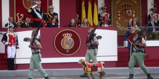 La cabra de la Legión comparte nombre con el líder de Podemos... aunque no bala tanto