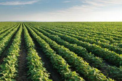 Extremadura recibirá 3,5 millones de euros para Programas de Desarrollo Rural