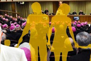 Francisco anuncia al Sínodo la creación de un nuevo Dicasterio de Laicos y Familia