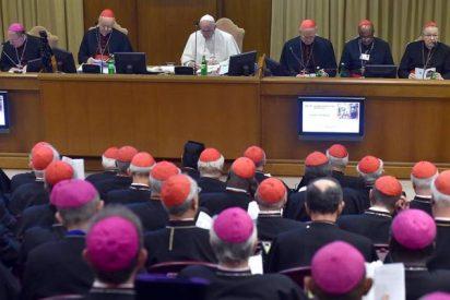 Termina un Sínodo, continúa un proceso sinodal