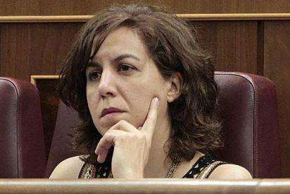 Rosa Díez pide perdón a los votantes de UPyD por haber llevado en las listas a gente como Irene Lozano