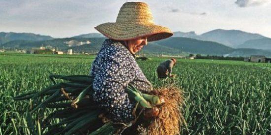 FADEMUR Extremadura forma a mujeres rurales de Palomero (Cáceres)