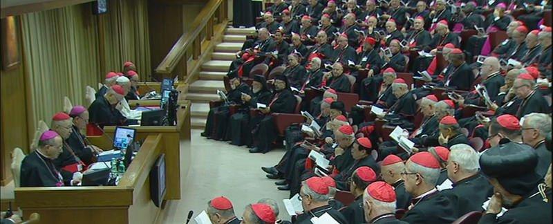"""Somos Iglesia: """"La Iglesia debe superar la brecha entre doctrina y realidad"""""""