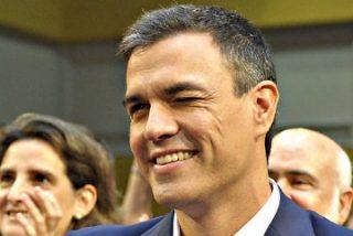 """Pedro Sánchez """"corta la cabeza"""" a 59 diputados del PSOE, que están cabreados como monos"""