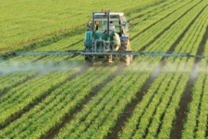 Los agricultores extremeños no podrán adquirir productos fitosanitarios