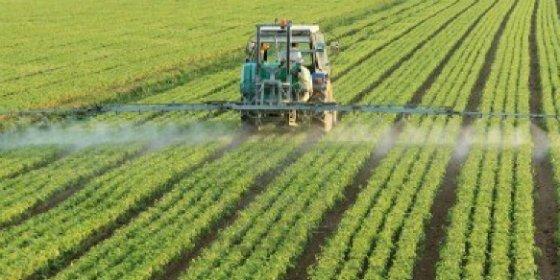 La Junta de Extremadura abona dos millones de euros a siete mil agricultores