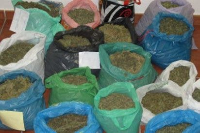 Detenidas dos personas por tráfico de estupefacientes en Marchena (Sevilla)