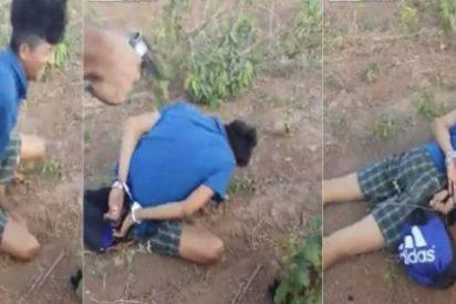 """La brutal ejecución de un ratero en Brasil por chivato: """"¡No me mates!"""""""