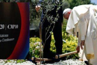 El Papa no tiene previsto acudir a la Cumbre del Clima de París