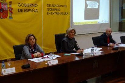 Activado el Plan de Vialidad Invernal en Extremadura