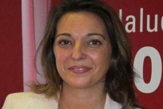 Podemos Córdoba, PSOE e IU guardan un minuto de silencio como homenaje... a las víctimas del bombardeo francés en Siria