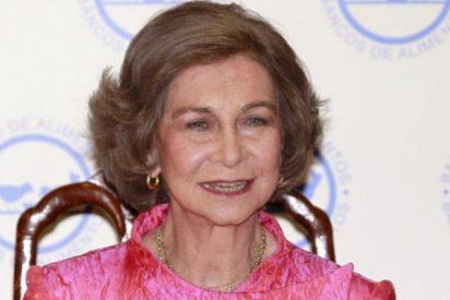 La Reina doña Sofía, galardonada por su labor solidaria