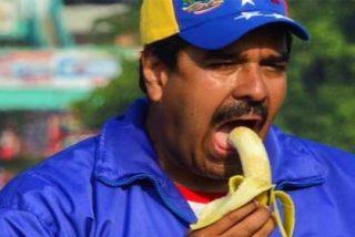 El 'Black Friday' electoral del tirano Maduro: regala cerdos, becas, taxis...y lo que surja