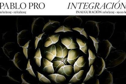 Integración Pablo Pro