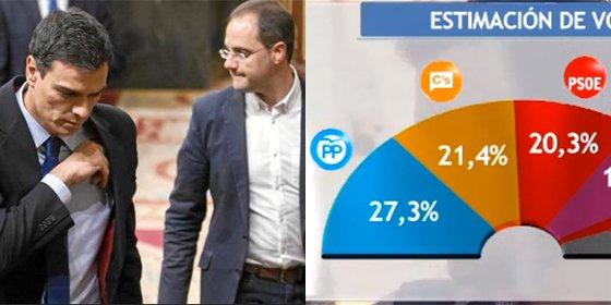 Catástrofe del PSOE en el horizonte: Ciudadanos ya es segundo en intención de voto