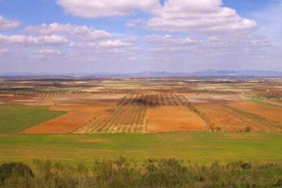 Monago exige a Vara compromiso con el proyecto de regadío de Tierra de Barros