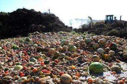 Ropa y comida a la basura