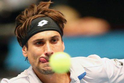 Ferrer arrolla a Tsonga y se cita con Nadal en las semifinales de Abu Dhabi