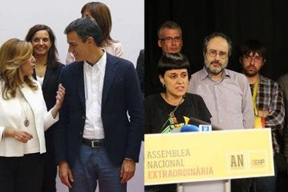 """Antonio Burgos, pesimista a más no poder sobre el futuro de España: """"Está en manos de los barones del PSOE y en 3.000 zarrapastrosos de las CUP"""""""