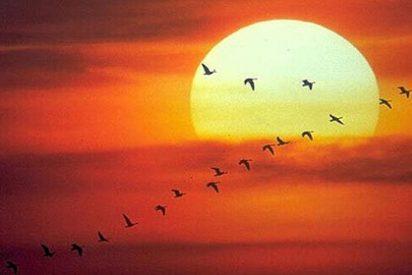 """Científicos alemanes lanzan """"un sol artificial"""" para generar energía"""