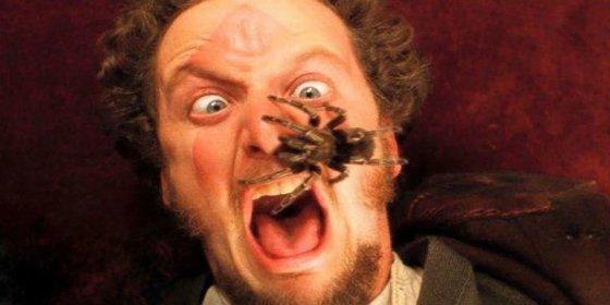 El secreto de la espantosa tarántula en 'Solo en casa'