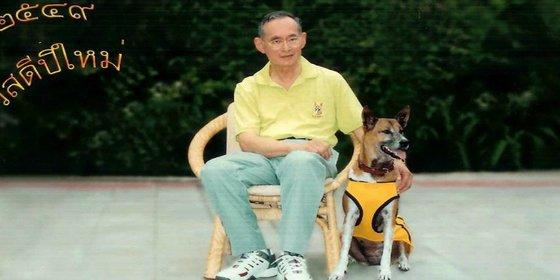 El tailandés que se choteó de la perra del rey se enfrenta a 37 años de cárcel