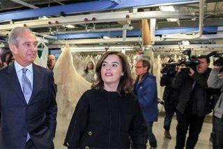 Así 'agradece' El País los favores de Soraya Sáenz de Santamaría a PRISA: le llama