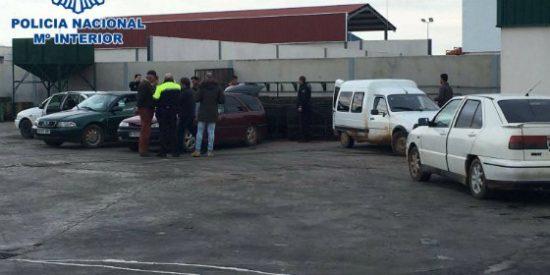La Policía Nacional interviene 1.400 kilos de aceitunas en Almendralejo